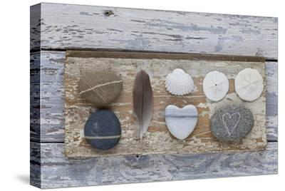 Still Life, Pebble Stones, Heart, Seashell, Feather