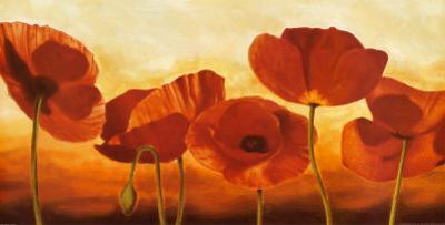 In the Sun by Andrea Kahn