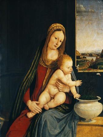 Madonna and Child or Madonna of the Carnations, 1490-1495