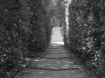 Path with Shrubs at the Boboli Gardens in Florence, Italy-Andrea Sperling-Photographic Print