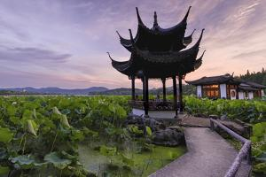 Pavilion, Lotus Field and Zig Zag Bridge at West Lake, Hangzhou, Zhejiang, China, Asia by Andreas Brandl