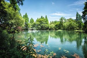 Peaceful Lake Scene with Greenery at One of the Lesser known Spots at West Lake in Hangzhou by Andreas Brandl