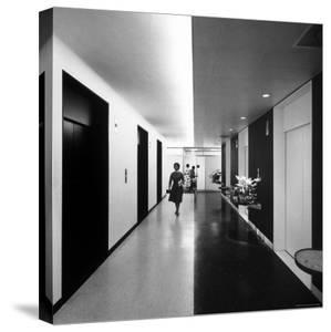 Elevator Bank in the New Time and Life Building by Andreas Feininger