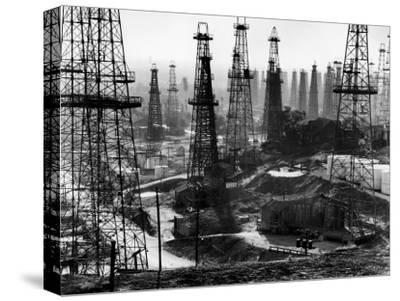 Forest of Wells, Rigs and Derricks Crowd the Signal Hill Oil Fields