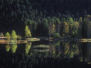 France, Vosges Mountains, Les Vosges, Lac Du Lispach in Autumn by Andreas Keil