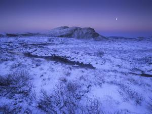 Norway, Telemark, Moonrise over the Heddersfjell in Winter by Andreas Keil
