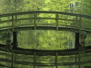 The Netherlands, the Hague, Haagse Bos, Bridge in the Municipal Park by Andreas Keil