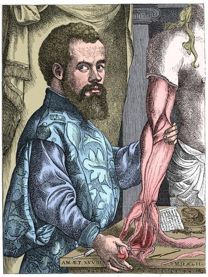 Andreas Vesalius, 16th century Flemish anatomist-Unknown-Giclee Print