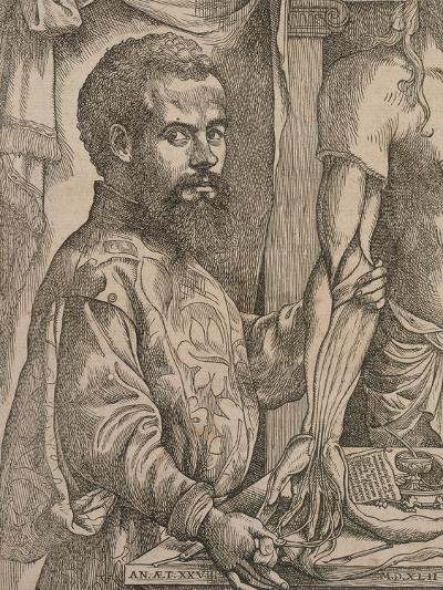 Andreas Vesalius Dissecting the Muscles of the Forearm of a Cadaver, 1543-Steven van Calcar-Giclee Print