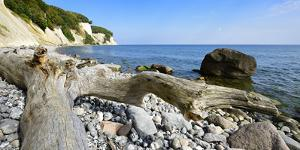 Chalk Rocks, Erratic Blocks, Driftwood, National Park Jasmund, Island RŸgen by Andreas Vitting