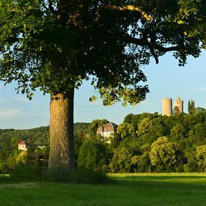 Germany, Saxony-Anhalt, Bad Kšsen, Saale Valley, Landscape with Ruin Saaleck by Andreas Vitting