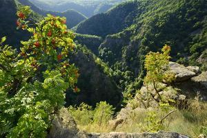 Germany, Saxony-Anhalt, Harz, Thale, view of the Bodetal from the Roßtrappe by Andreas Vitting