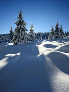 Snow-Covered Pristine Winter Landscape in the Harz National Park, Near Schierke, Germany by Andreas Vitting