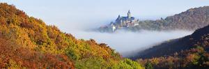 Wernigerode Castle Emerging from Morning Fog, All around Autumnal Woods, Saxony-Anhalt by Andreas Vitting