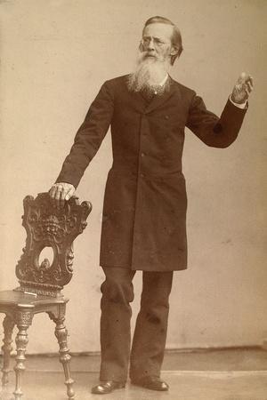 Apollon Maykow, Russian Poet, Late 19th Century