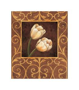 Ornamental Tulips by Andres Gonzales