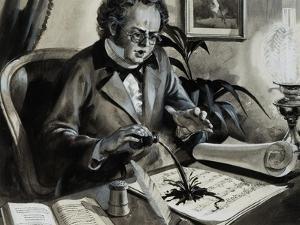 Portrait of Franz Schubert by Andrew Howat