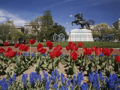 Andrew Jackson Statue, Washington, D.C., USA--Photographic Print
