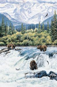 Brown Bear- Expectations by Andrew Kiss