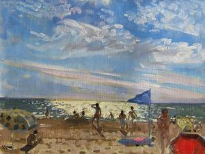 Blue Flag and Red Sun Shade, Montalivet by Andrew Macara