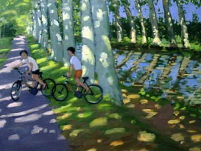 Canal Du Midi, France by Andrew Macara