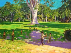 Cricket Match, St George, Granada, 2011 by Andrew Macara