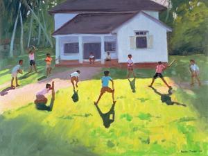 Cricket, Sri Lanka, 1998 by Andrew Macara