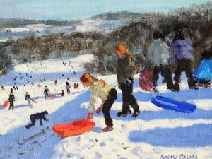 Detail of the Red Sledge, Allestree Park, Derby, 2016 by Andrew Macara