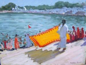 Drying Sari, Pushkar by Andrew Macara