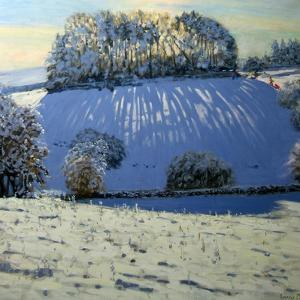 Field of Shadows, Near Youlgrave, Derbyshire by Andrew Macara