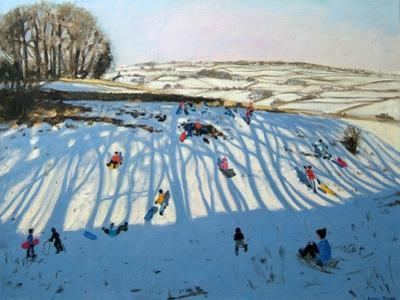 Fields of Shadows, Monyash, Derbyshire by Andrew Macara