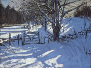 Gate Near Youlgreave, Derbyshire by Andrew Macara