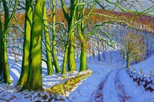 Green Trees, Winter, Dam Lane, Derbyshire by Andrew Macara