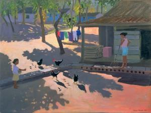 Hens and Chickens, Cuba, 1997 by Andrew Macara