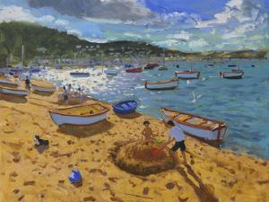 Large Sandcastle,Teignmouth, 2013 by Andrew Macara