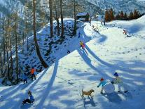 Selva Val Gardena, Italy-Andrew Macara-Giclee Print