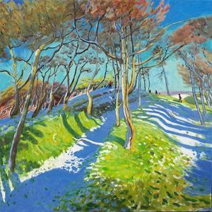 Last of the Snow, Ladmanlow, 2015 by Andrew Macara