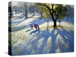 Markeaton Park, Early Snow by Andrew Macara
