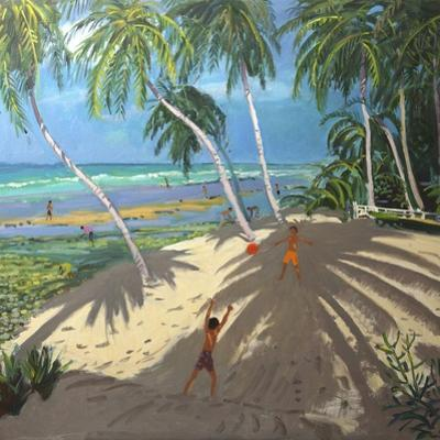 Palm Trees, Clovelly Beach, Barbados, 2013 by Andrew Macara