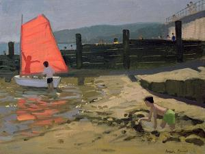 Red Sail, Isle of Wight by Andrew Macara