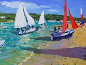 Sailing Boats by Andrew Macara