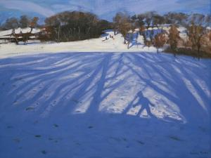Shadow of Sledger, 2008 by Andrew Macara