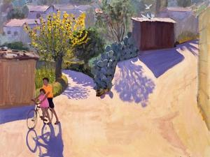 Spring in Cyprus, 1996 by Andrew Macara