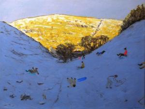 Sun and Snow, 2007 by Andrew Macara