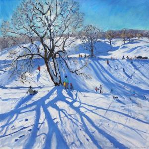 Tobogganers, Chatsworth, 2012 by Andrew Macara