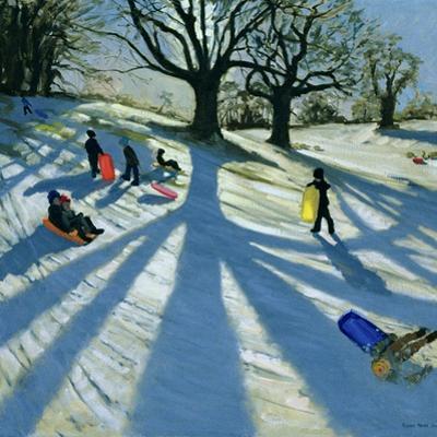 Winter Tree, Snow Sledgers, Calke Abbey, Derby