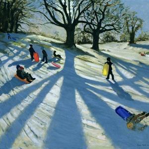 Winter Tree, Snow Sledgers, Calke Abbey, Derby by Andrew Macara