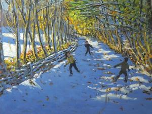 Yellow Trees, Allestree Park, 2012 by Andrew Macara