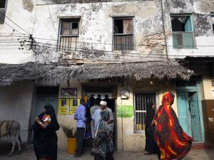 The Narrow Streets of Lamu Town, Lamu, Kenya, East Africa, Africa by Andrew Mcconnell