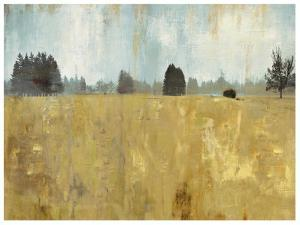 Golden Fields by Andrew Michaels